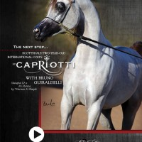 0217-EB-CAPRIOTTI